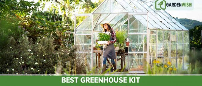 Best Greenhouse Kits