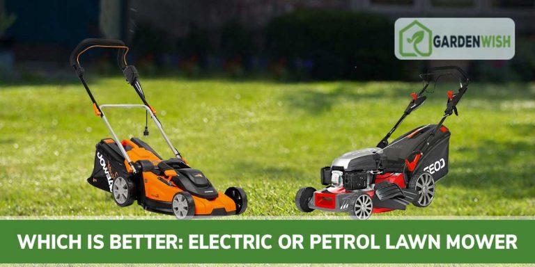 Electric vs Patrol