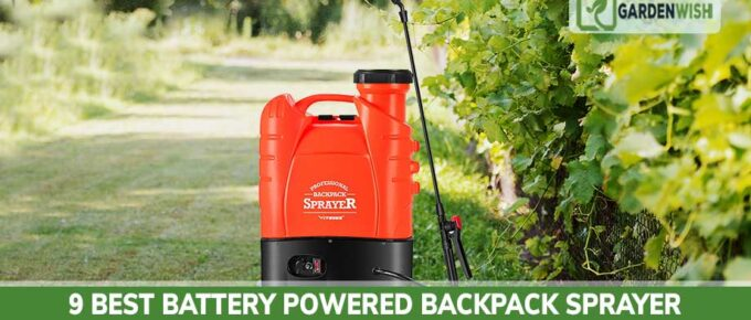 Best Battery Powered Backpack Sprayer