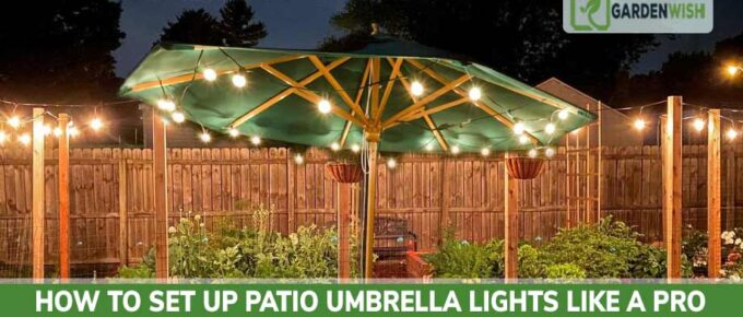 How to Set Up Patio Umbrella Lights
