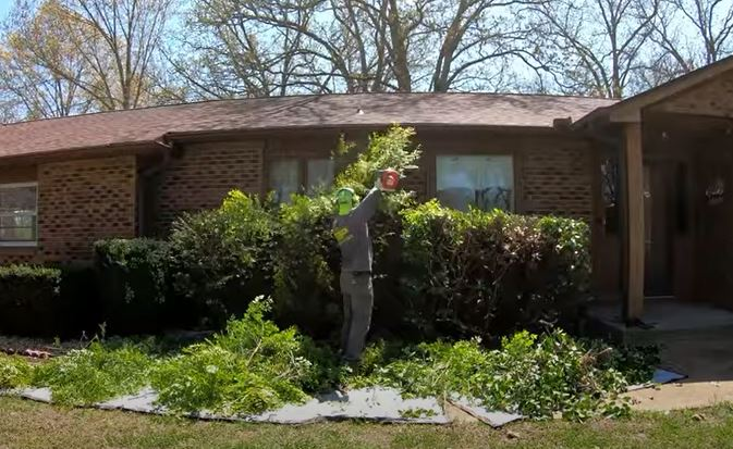 tarp for hedge trimming