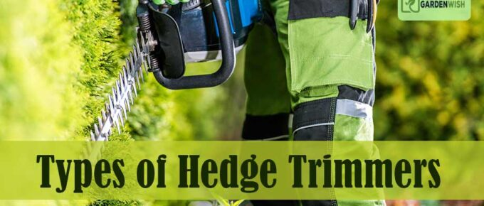 Types of Hedge Trimmers